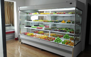 Main Use of Tthe Freezer Display Case